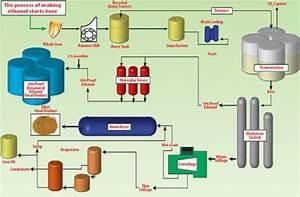 Fuel Ethanol Plants