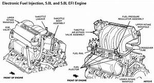 302 Fuel Injected Engine Diagram  U2022 Downloaddescargar Com