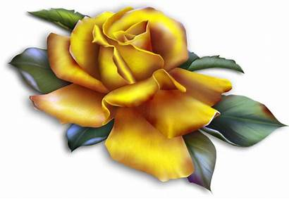 Yellow Rose Clipart Roses Transparent Clipground Yopriceville