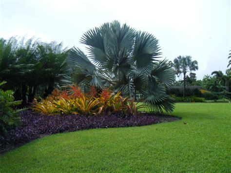 design study fairchild tropical botanic garden miami fl