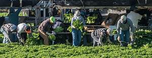 migrant farm workers their health is our health