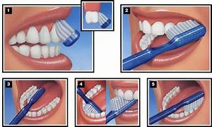 Manual Tooth Brushing And Flossing Technique  U2013 Dental Care
