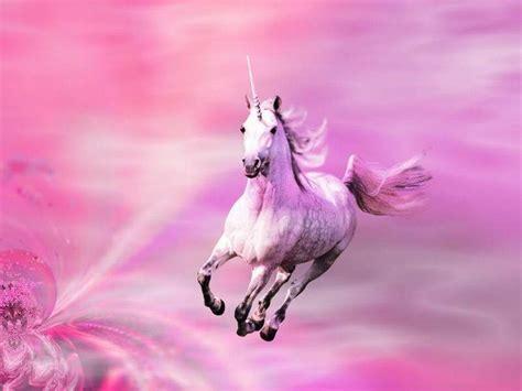 Pink Shimmers Unicorns Wallpaper (10796170) Fanpop