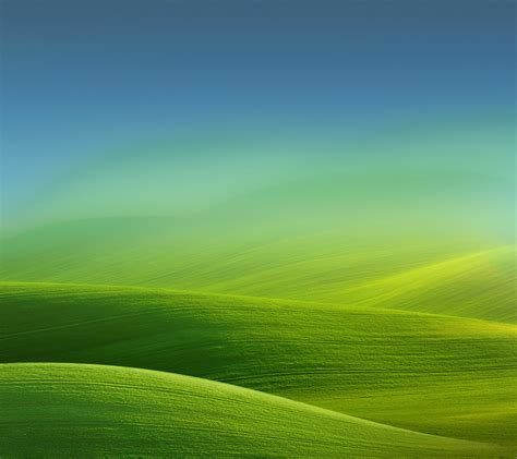 Field, Nature, Landscape, Simple, Hill, Gradient, Green