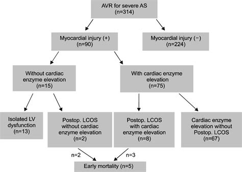 myocardial injury  aortic valve replacement