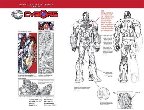 Randomly Blogging/venting My Frustration About Cyborg