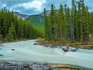 Mountain, Forest, River, Trees, Landscape, 7832, Wallpapers13, Com