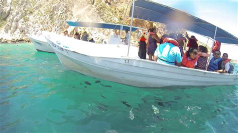 Glass Bottom Boat Cabo by Los Cabos San Lucas Mexico Glass Bottom Boat 08 16