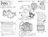 Biomolecules Amoeba Sisters Worksheet Coloring Lipids Sheet Biology Prerequisites Nursing Lessons Teaching Teacherspayteachers sketch template
