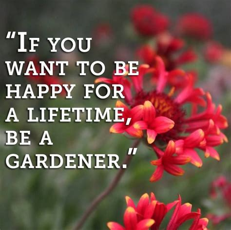 need a gardener 17 best images about gardening quotes on pinterest gardens garden quotes and signs