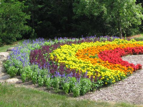 klehm arboretum and botanic garden what s blooming in july klehm arboretum botanic garden