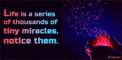 Miracles Series Tiny Notice Them Thousands Quotes