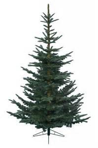 kaemingk real looking cut fir artificial tree 210cm 7ft ebay