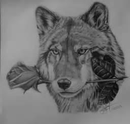Lobo Mexicano con rosa (Dibujo a lapiz) Arte Taringa!