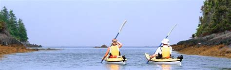Paddle Boat Rentals Halifax by Sea Kayaking In Halifax Scotia East Coast Outfitters