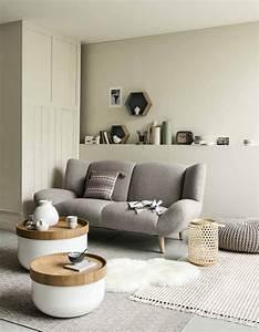 Idees Deco Salon : un salon gris pour une d co chic et intemporelle elle ~ Melissatoandfro.com Idées de Décoration