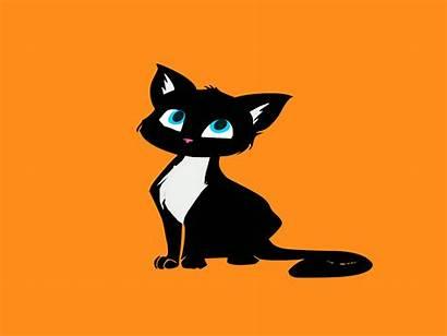 Animated Cat Animate Dribbble Animation Icon Gimp