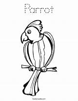 Parrot Coloring Loro El Noodle Parrots Template Worksheet Hatch Pages Outline Twisty Print Goose Eagle Chicks Eggs Twistynoodle Built California sketch template