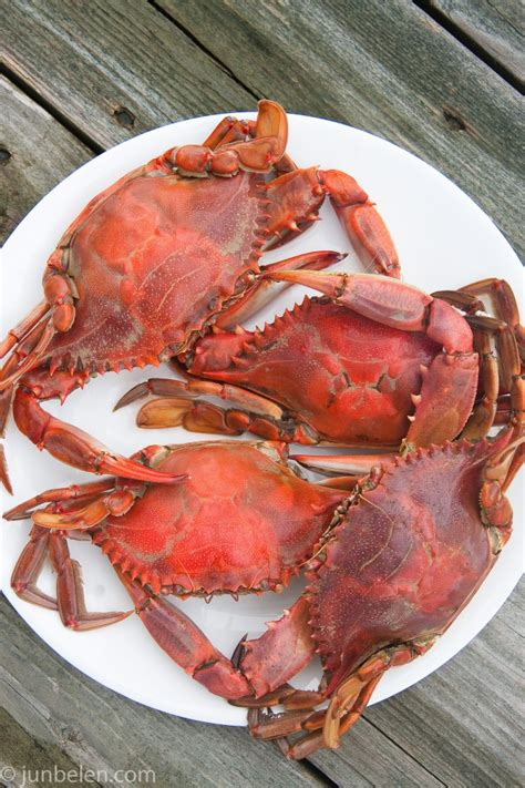 how to boil crab how to cook blue crab