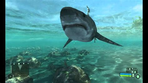 shark animation  crysis youtube