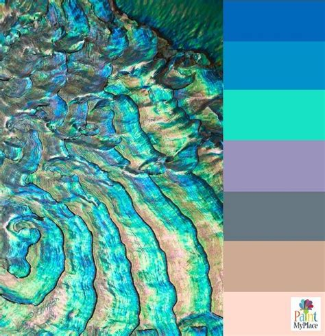 abalone shell paint color pin by paint my place app on inspiration from nature