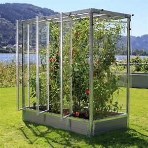 Gewächshaus Für Tomaten Selber Bauen : tomatenhaus online kaufen f r optimales wachstum ~ Markanthonyermac.com Haus und Dekorationen