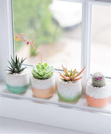 plants windowsill impress sills