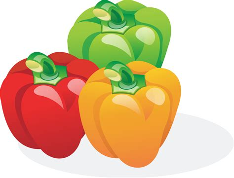 bell pepper clipart clipart multicolored bell peppers