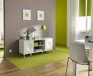 Deco Vert Anis : d co salon peinture couleur taupe et vert anis ~ Teatrodelosmanantiales.com Idées de Décoration