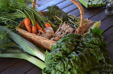 Preparing Your Spring And Summer Vegetable Garden » My