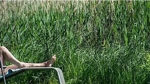 Sauna Im Garten : nackt im garten mann verliert sauna prozess und muss nachbarn aushalten ~ Sanjose-hotels-ca.com Haus und Dekorationen
