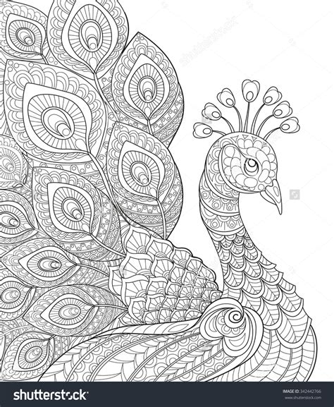 Peacock Coloring Pages For Adults Color Bros