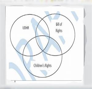 Triple Venn Diagram Udhr  Bill Of Rights  Children U0026 39 S