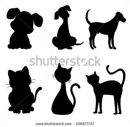 cat tail stock images royalty  images vectors