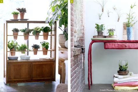 meuble pour plantes d intérieur cinq id 233 es pour mettre en sc 232 ne vos plantes d int 233 rieur