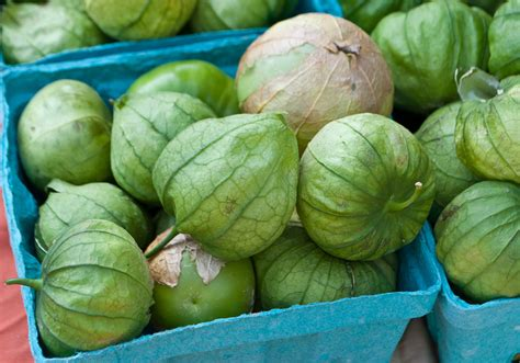 green tomatoes what are tomatillos and green tomatoes same or different organic authority
