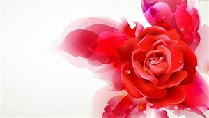 Red Rose Tumblr Backgrounds