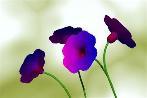 protecao de tela flowerz  techtudo