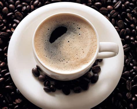 drink kopi 猫屎咖啡来了 尚品频道 新浪网