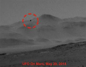 UFO SIGHTINGS DAILY: Biological Life Form Shoots Past ...