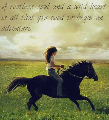 wild horse quotes from flicka