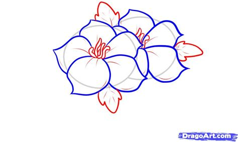 How To Design A Flower Garden Step By Step easy flower drawing in pencil clipart best