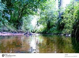 Baum Am Wasser : die lahn natur wasser ein lizenzfreies stock foto von ~ A.2002-acura-tl-radio.info Haus und Dekorationen