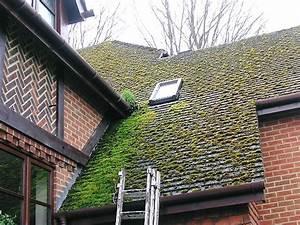 avant et apres le nettoyage de la toiture demoussage et le nettoyage des toitures, facade