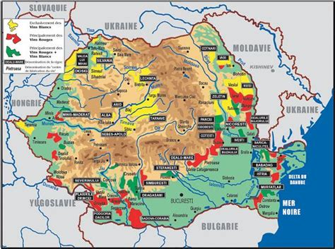 Les Vins De Roumanie