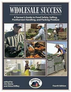 Wholesale Success