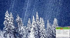 Falling Snow Animated Wallpaper - WallpaperSafari