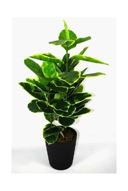 Rubber Artificial Plant Ficus Plants Indoor Tree
