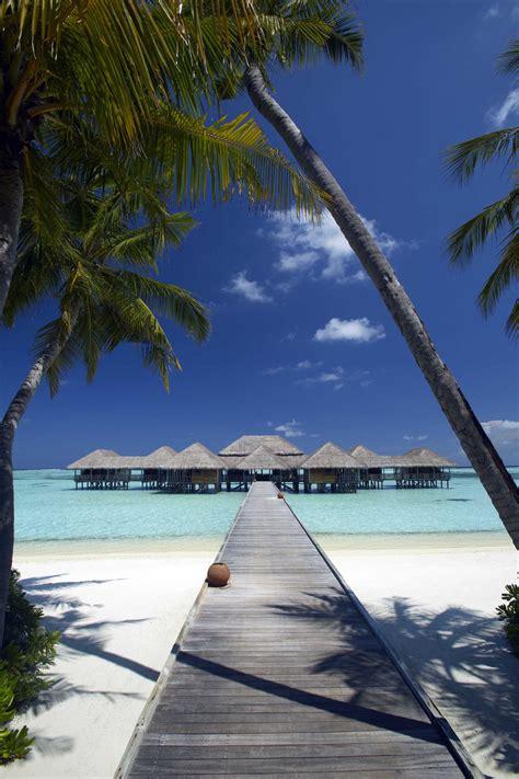 Gili Lankanfushi Resort Maldives Most Beautiful Spots