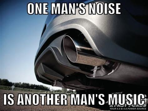Mustang Memes - mustang humor memes street obsession pinterest ears a girl and love the